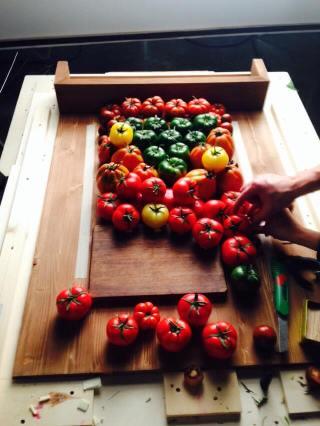 Casting pomodori