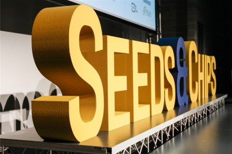 seeds-chips